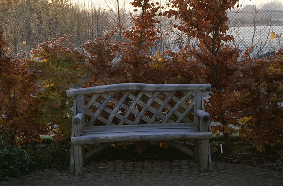 Prime Image Wooden Bench In Large Country Garden In Autumn Ewa Ibusinesslaw Wood Chair Design Ideas Ibusinesslaworg