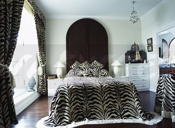 image zebra print bedcover and curtains in white country bedroom