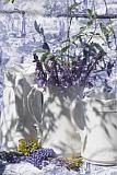 20135305450_XD100645.jpg