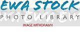 2014322195411_EF571201.jpg